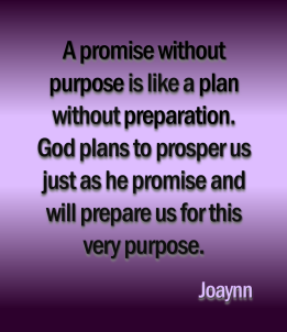 promise-without-purpose-joaynn
